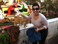 Malta loves its cats!