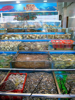 Fresh seafood for sale at a restaurant in Sai Kung