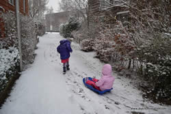 Sledding to School - We moved from hot Australia to cold Holland - and even had to take the sled to school for a few days!
