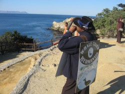Whalecrier announcing the arrival of whales in Hermanus