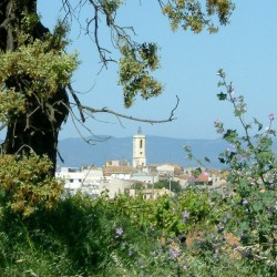 The little town where we live. Sant Cugat Sesgarrigues in spring.
