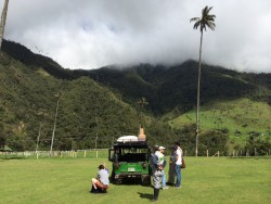In the Cocora Valley, in Colombia's coffee region