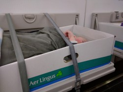 Traveling with baby, the bassinet